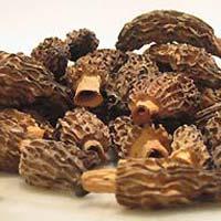 Dried Morels