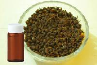 Zanthoxylum Seed
