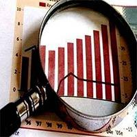Market Research & Development