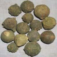 Majuphal Herb