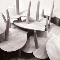 Wooden Anthuriums