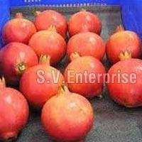 Fresh Ruby Pomegranates