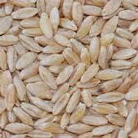 Soft White Wheat Grade 2