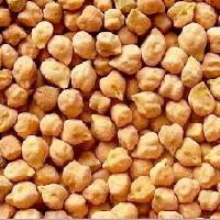 brown chick pea