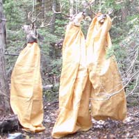 Full Carcass X-large Game Bags
