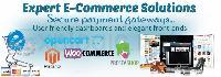 Ecommerce Website Designin Services
