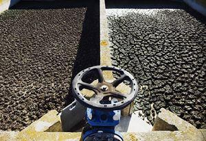 Sewage Sludge Treatment Chemical