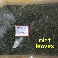 Dehydrated Mint Leaves