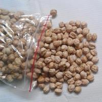 Kabuli Chickpeas
