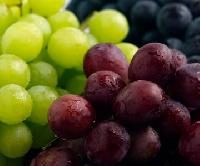 White And Red Grape Juice Concentrate