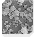 Synthetic Silica