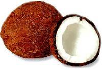Coconut - 01