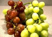 Grape - 02