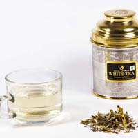 White Tea Silver Tips