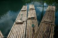 Boat Building Bamboo