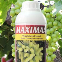 Maximaa Organic Plant Growth Promoter