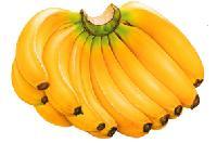 Banana (musa)
