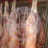 SHEEP MEAT CARCASS