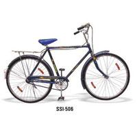 Roadster Raleigh Type Bicycle (Standard)