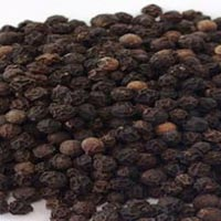 Black Pepper Seeds