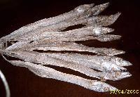 Dried Ribbon Fish
