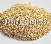 Sesame Seeds 01