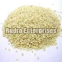 Sesame Seeds 04