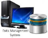 Database Management Services
