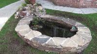 Small Fish Pond