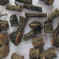 Dried Curculigo Orchioides