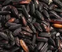 Black Sticky Rice