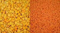 Yellow Peas Lentils