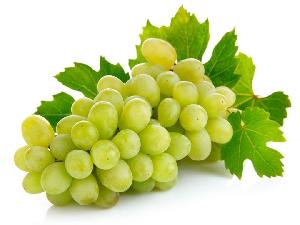 Fresh Grapes