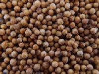 Coriander Seed Badami