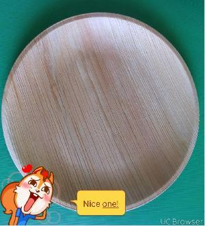 Areca Leaf Plate 10 Flat(round)