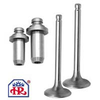 Motorcycle Engine Valves