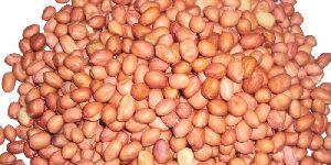 Peanut Oil Seeds
