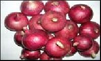 Phule Samarth Onion Seeds