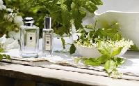 Jasmine Perfumes