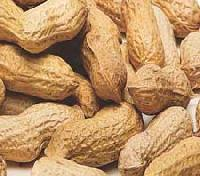 Ground Nuts