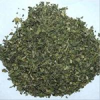 CORIANDER LEAVES AND POWDER