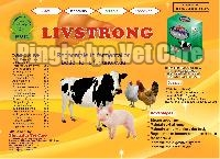 Livstrong Powder Feed Supplement