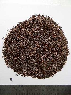Sabadilla Seeds