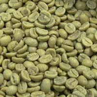 Raw Arabica Coffee Beans
