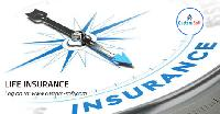 Life Insurance System Implementation By Customsoft