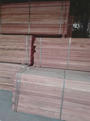 Romanian beech timber / lumber