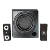 EDM Customized Audio System