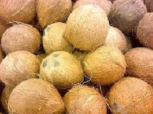 Fresh Farm Coconuts