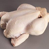 Brazilian Halal Certified Whole Frozen Chicken