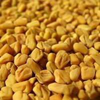 Organic & Roasted Fenugreek Seeds